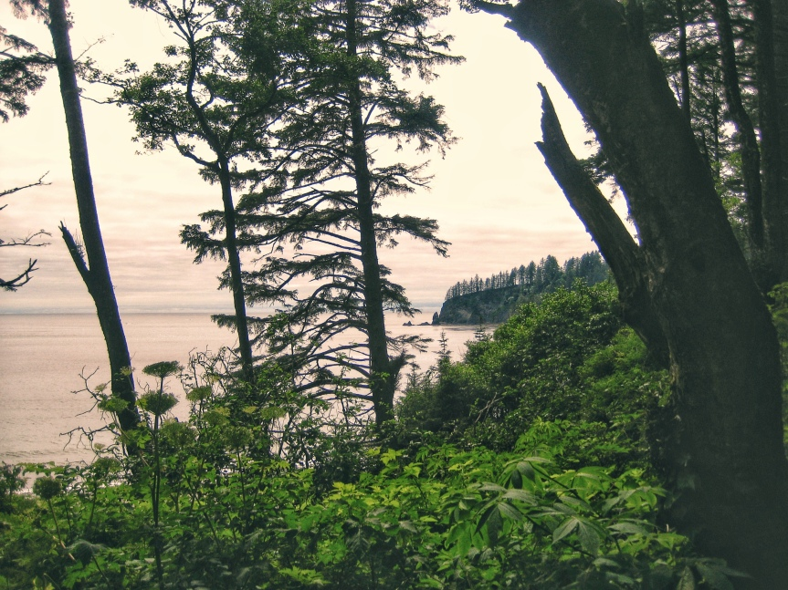 Not Your Momma's OlympicNP